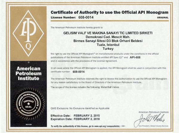 API-608-0014-GELISIM-VALVE-VALF