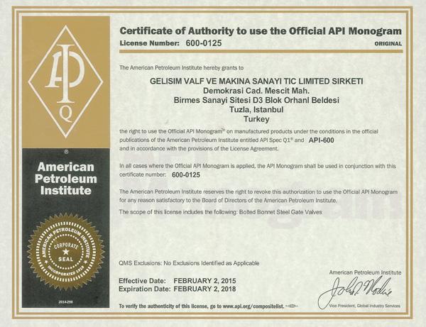 API-600-0125-Gelisim-Valf-Valve-Certificate